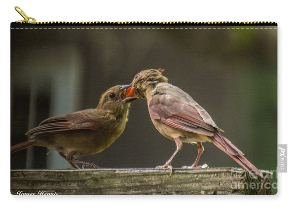 Bird Parenting Carry-all Pouch