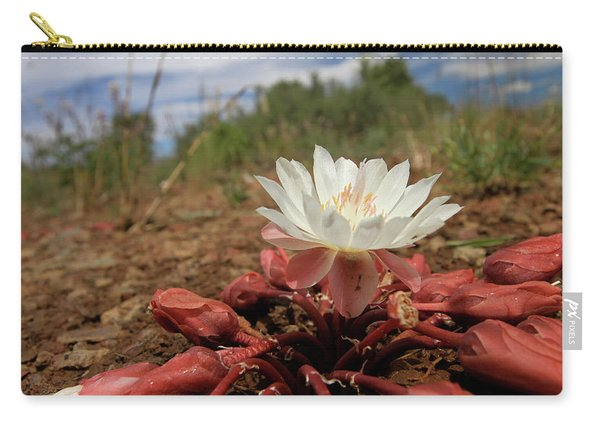 Bitterroot Wildflower Carry-all Pouch