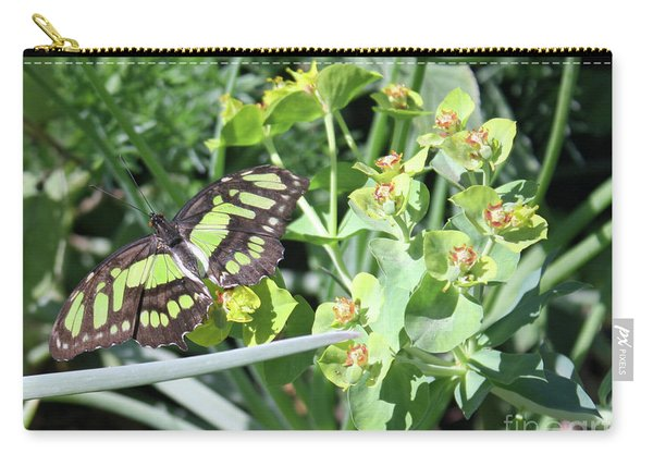 Black And Green Butterfly Carry-all Pouch