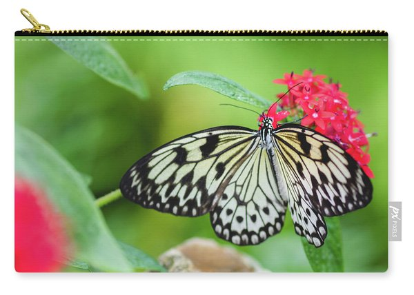 Carry-all Pouch featuring the photograph Black And White Butterfly by Raphael Lopez
