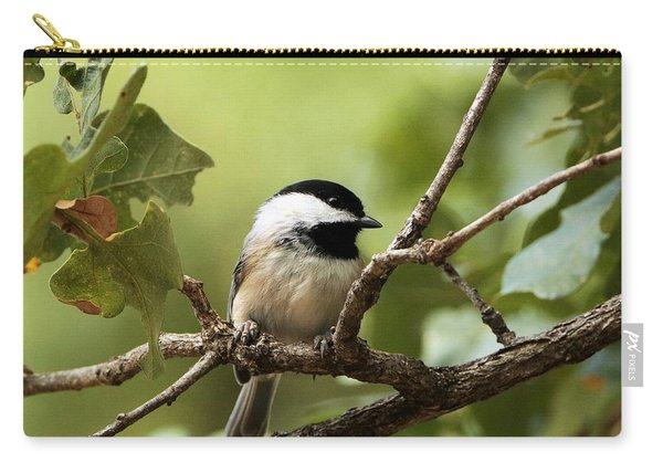 Black Capped Chickadee On Branch Carry-all Pouch