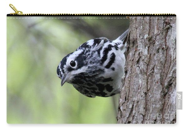 Black-n-white Warbler Carry-all Pouch