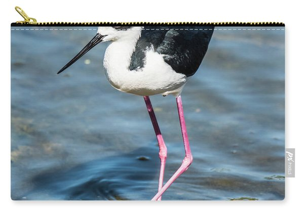 Black-necked Stilt Shows Legs Carry-all Pouch