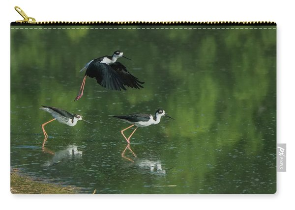 Black-necked Stilts 4301-080917-1cr Carry-all Pouch