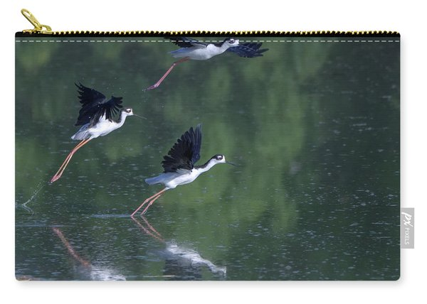 Black-necked Stilts 4302-080917-2cr Carry-all Pouch