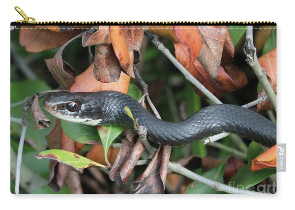 Black Racer Snake Stare Down Carry-all Pouch