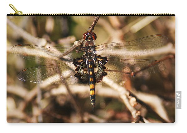 Carry-all Pouch featuring the photograph Black Saddlebags Dragonfly by William Selander