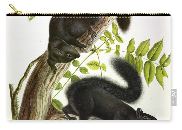 Black Squirrel Carry-all Pouch