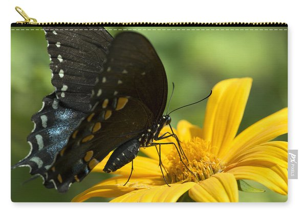 Black Swallowtail Drinking Carry-all Pouch