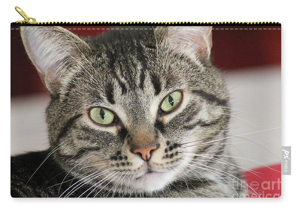 Black Tabby Carry-all Pouch
