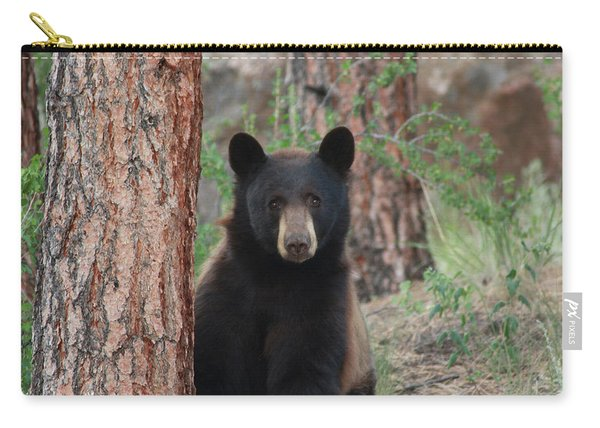Blackbear2 Carry-all Pouch
