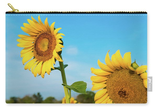 Blooming Sunflower In Blue Sky Carry-all Pouch