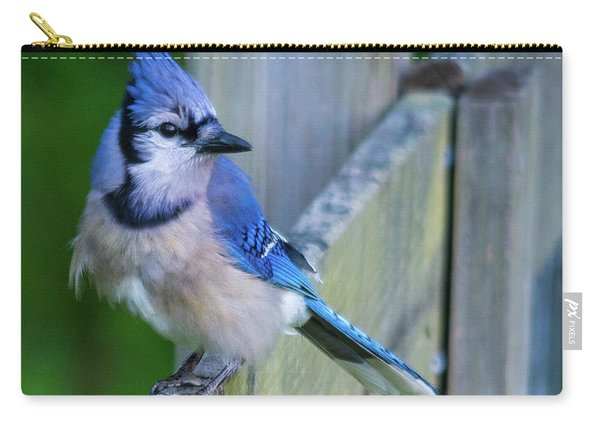 Blue Jay Fluffed Carry-all Pouch