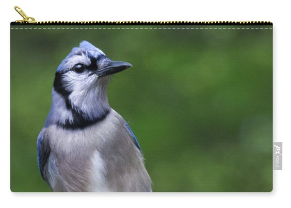 Blue Jay On Alert Carry-all Pouch