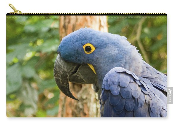 Blue Macaw Carry-all Pouch
