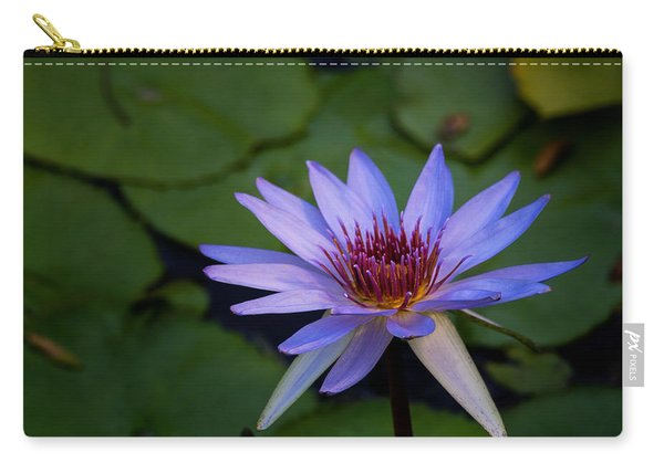 Blue Water Lily In Pond 2 Carry-all Pouch