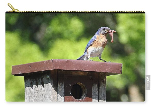 Bluebird Breakfast Feeding Carry-all Pouch
