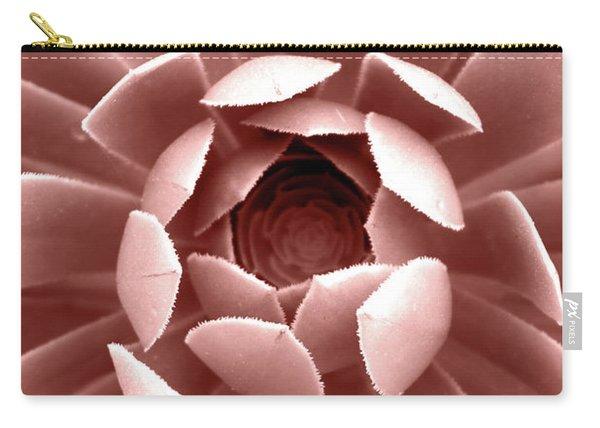 Blush Pink Succulent Plant, Cactus Close Up Carry-all Pouch