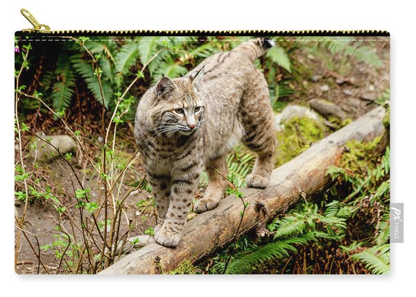 Bobcat In Forest Carry-all Pouch