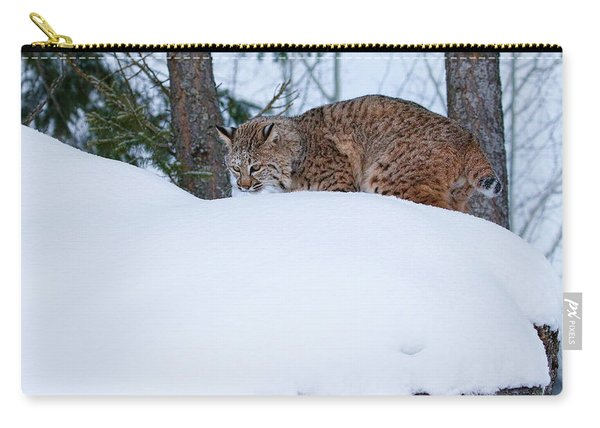 Bobcat On Snow Hill Carry-all Pouch