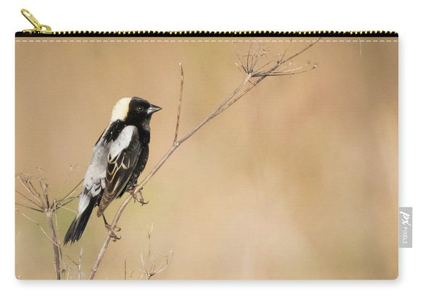 Bobolink  Carry-all Pouch