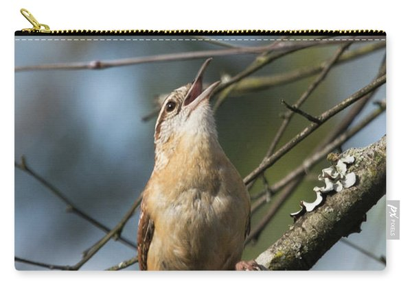 Bobolink Singing Carry-all Pouch