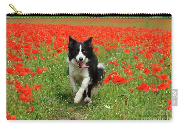 Border Collie In Poppy Field Carry-all Pouch