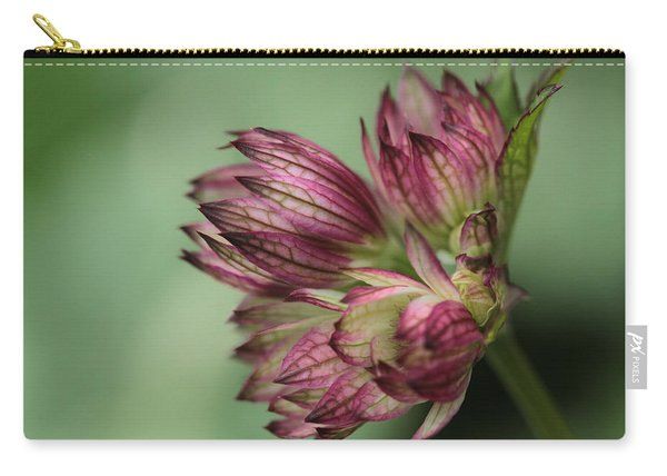 Botanica .. New Beginnings  Carry-all Pouch