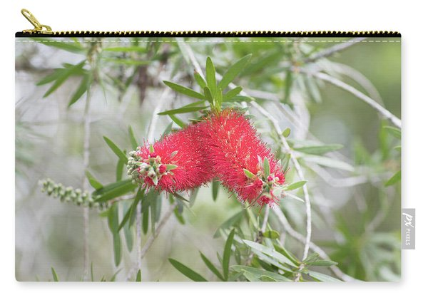 Carry-all Pouch featuring the photograph Bottlebrush by Raphael Lopez