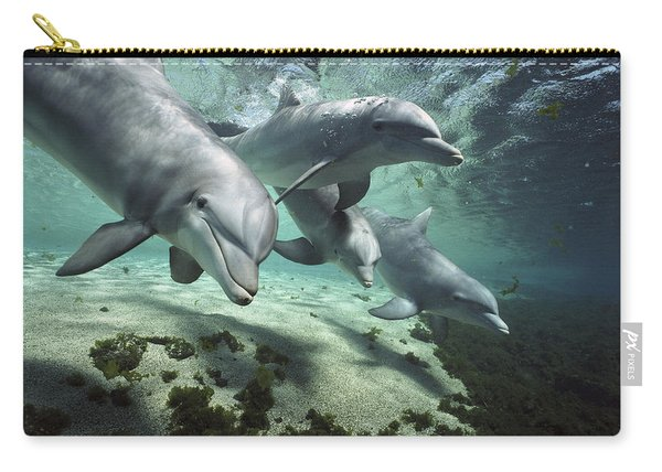 Four Bottlenose Dolphins Hawaii Carry-all Pouch
