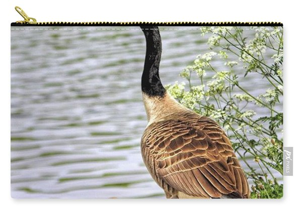 Branta Canadensis  #canadagoose Carry-all Pouch