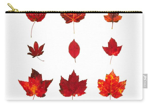 Bright Red Autumn Leaves Carry-all Pouch