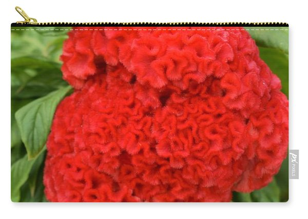 Bright Red Cockscomb Carry-all Pouch