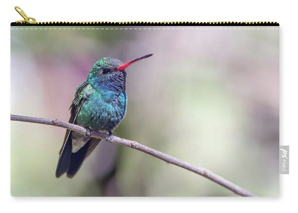Broad-billed Hummingbird 2008-031718-1cr Carry-all Pouch