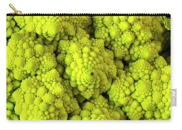 Broccoli Romanesco Close Up Carry-all Pouch