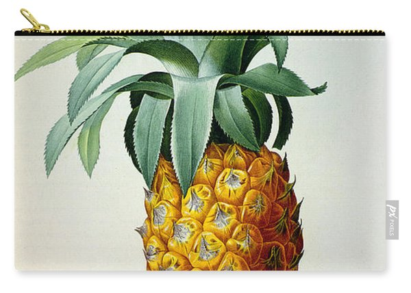 Bromelia Ananas, From 'les Bromeliacees' Carry-all Pouch
