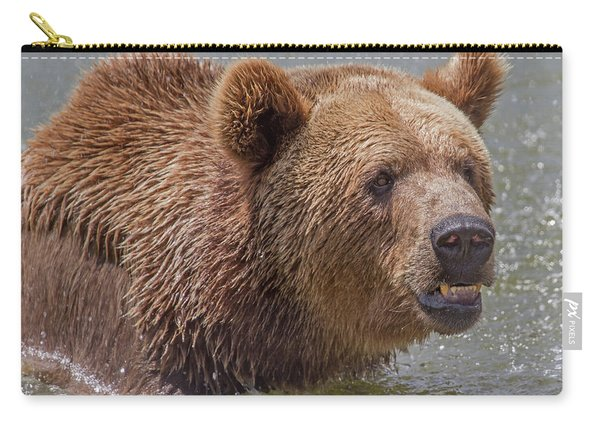 Brown Bear 10 Carry-all Pouch