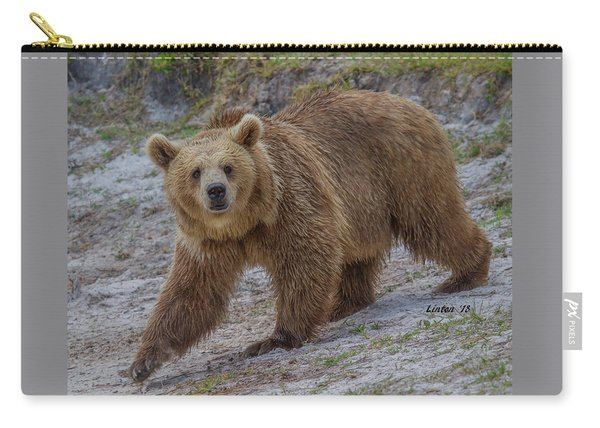 Brown Bear 3 Carry-all Pouch