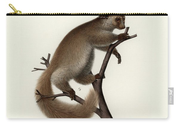 Brown Greater Galago Or Thick-tailed Bushbaby Carry-all Pouch