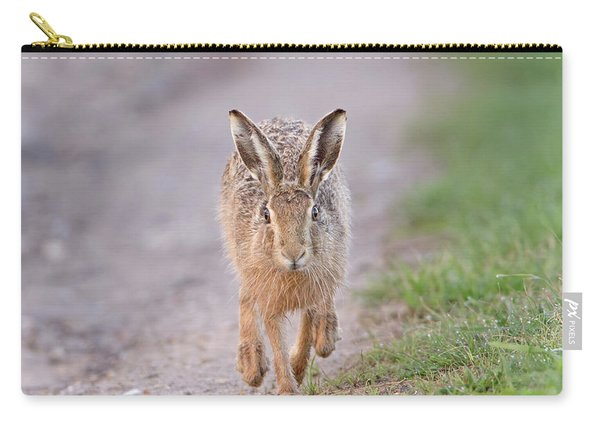 Brown Hare Approaching Down Track Carry-all Pouch