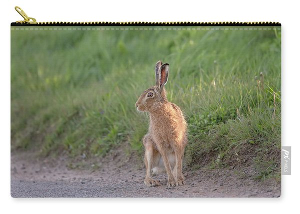 Brown Hare Listening Carry-all Pouch