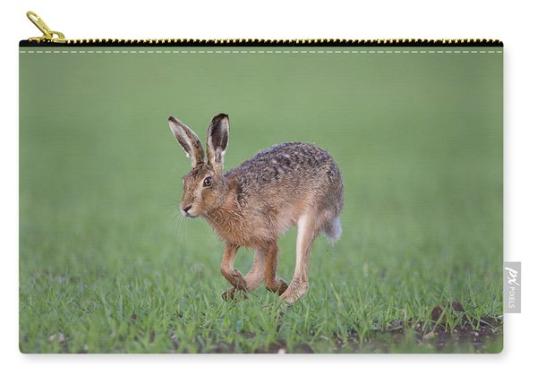 Brown Hare Running Carry-all Pouch