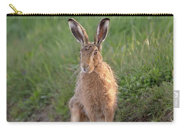 Brown Hare Sat On Track At Dawn Carry-all Pouch