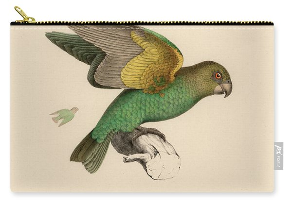 Brown-headed Parrot, Piocephalus Cryptoxanthus Carry-all Pouch