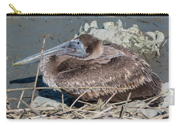 Brown Pelican 3 March 2018 Carry-all Pouch