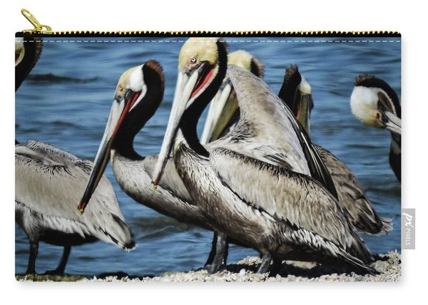 Brown Pelicans Preening Carry-all Pouch