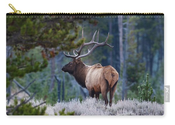 Bull Elk In Forest Carry-all Pouch