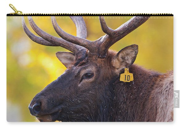 Bull Elk Number 10 Carry-all Pouch