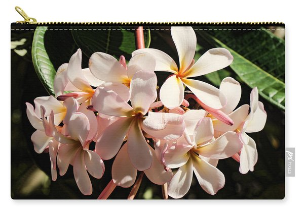 Bunch Of Plumeria Carry-all Pouch