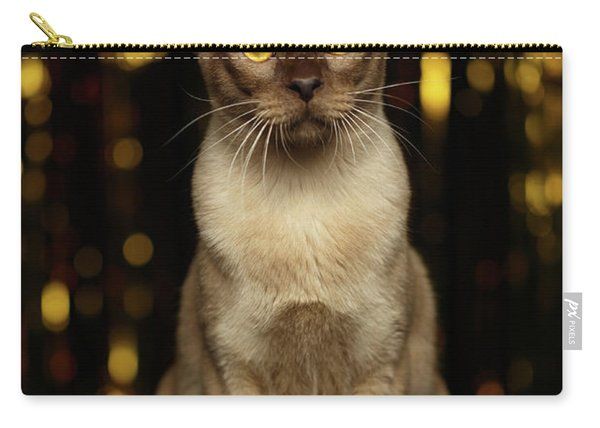 Burmese Cat Sits On New Year Background Carry-all Pouch